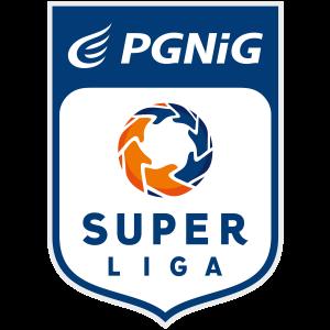 PGNiG Superliga-logo-pion